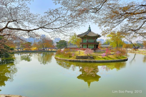 Korea Day 4 479