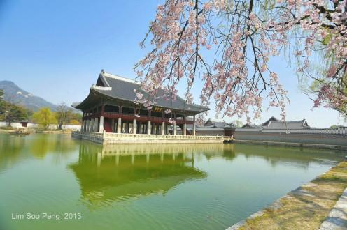 Korea Day 4 741