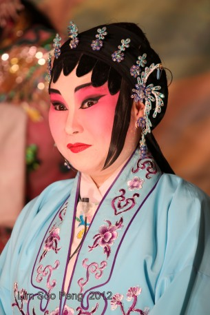 The Wayang Actress