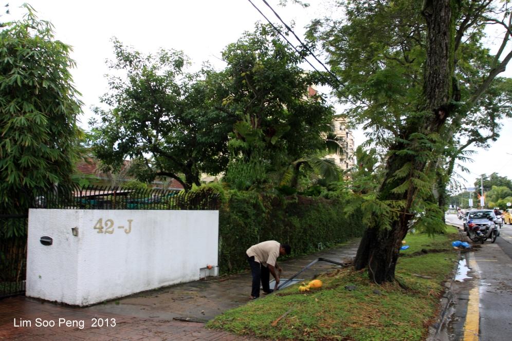 Loy Krathong 2013 010-001
