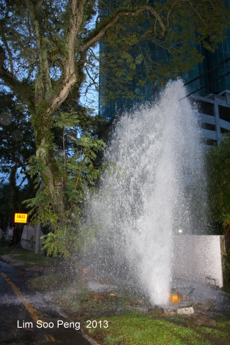 Water Fountain 003-001