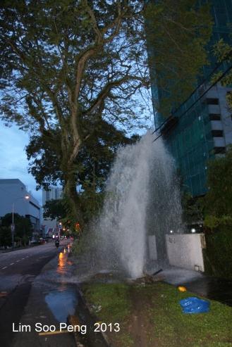 Water Fountain 006-001