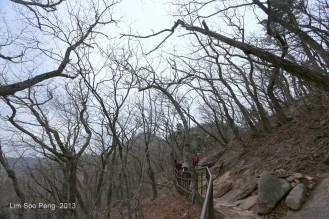 Korea D5 Pt1 384-001