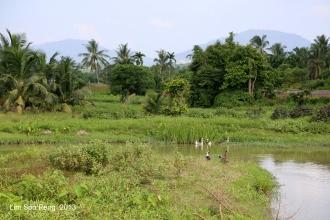SeberangPerai Shoot 078-001