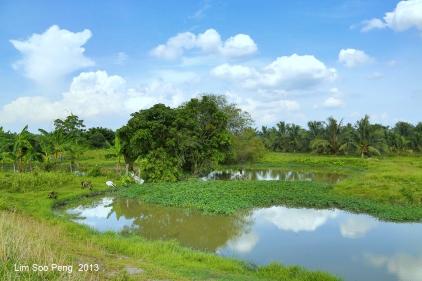 SeberangPerai Shoot 091-001