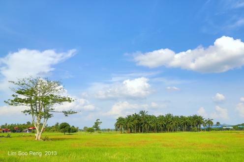 SeberangPerai Shoot 141-001
