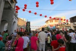 CNY Cultural & Heritage Celebrations 5D 145-001