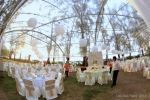 Edwin Chew Wedding166-001