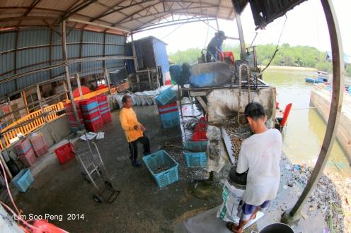 Bukit Tambun P2Bridge 068-001