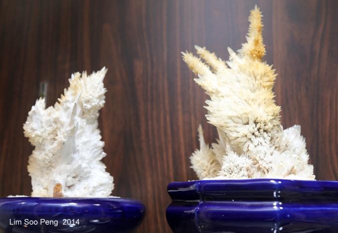 Crystal 5D 028-001