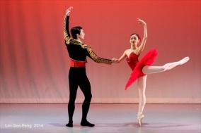 BalletIlluminations 70D 1052rs