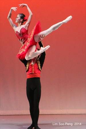 BalletIlluminations 70D 1138rs