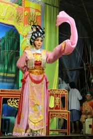 Jelutong Wayang 5D 046