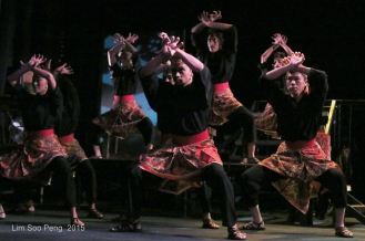 Wesak Sitiawan Concert 221