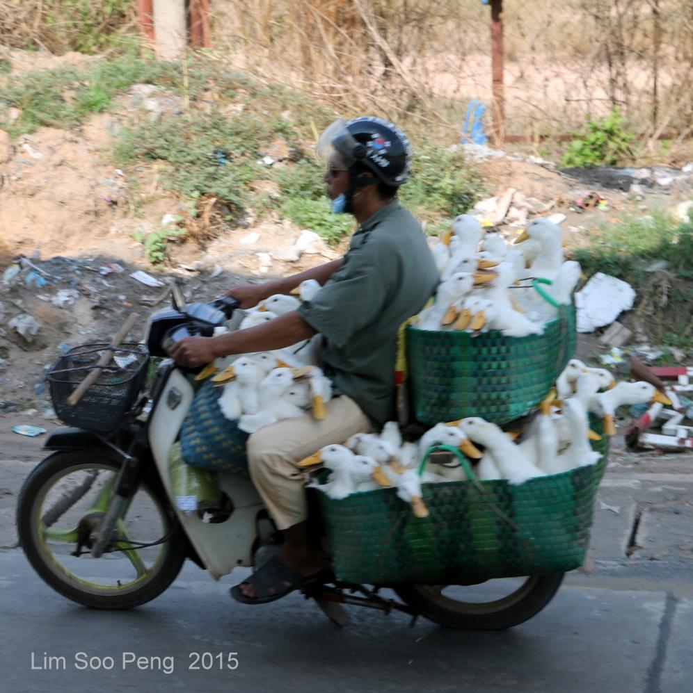 Vietnam Photo Trip Part 1 70D 494