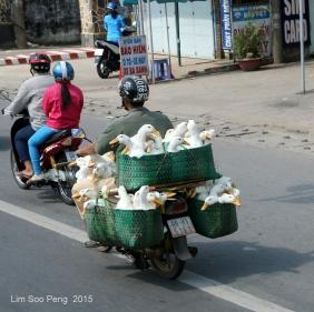 Vietnam Photo Trip Part 1 70D 497