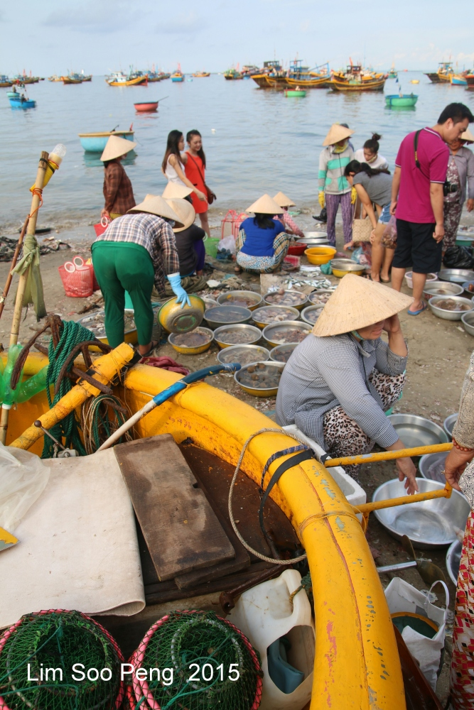 At the morning Wet Market of Seafood (4/6)