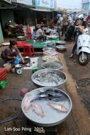 VietnamPhotoExpedition Day 5 990