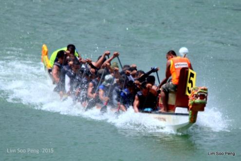 1-Dragon Boat 2015 193