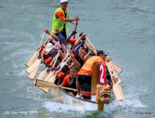 1-Dragon Boat 2015 288
