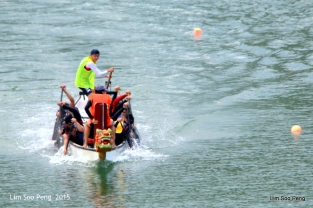 1-Dragon Boat 2015 460