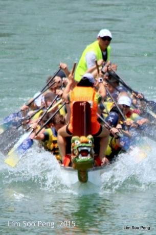 1-Dragon Boat 2015 731
