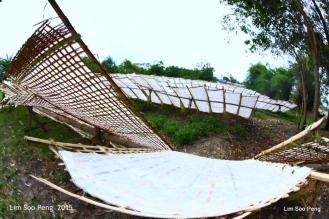 1-VietnamPhotoTrip Day 6 1370