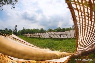 1-VietnamPhotoTrip Day 6 1398