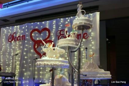 1-FreddieSon Wedding 027