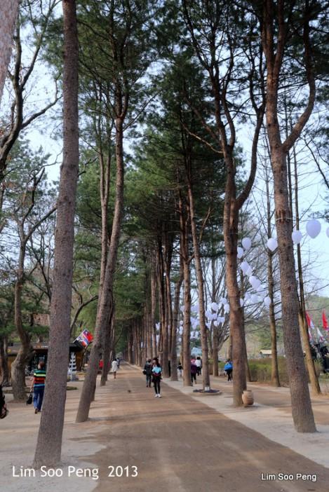 1-Korea Day 4 1499