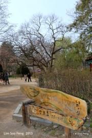 1-Korea Day 4 1524