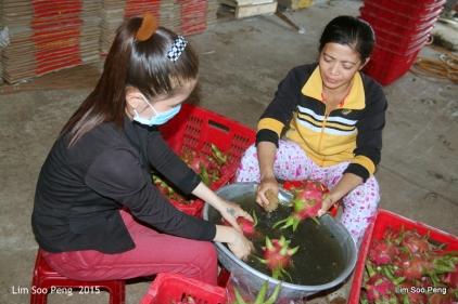 1-Vietnam Photo Trip Part 1 70D 1224