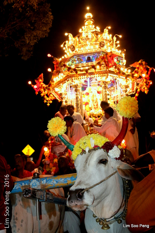1-Thaipusam 2016 Night 70D 054