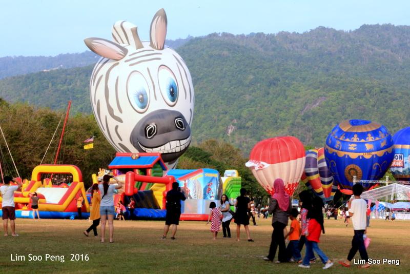 1-Hot Air Balloon 5D 013
