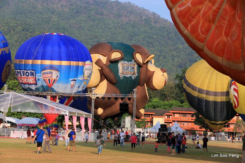 1-Hot Air Balloon 5D 040