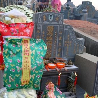 ChengBeng Dana 028