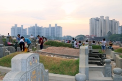 ChengBeng Dana 050