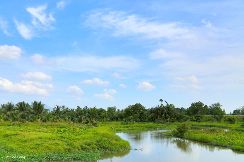 Near Sungai Dua