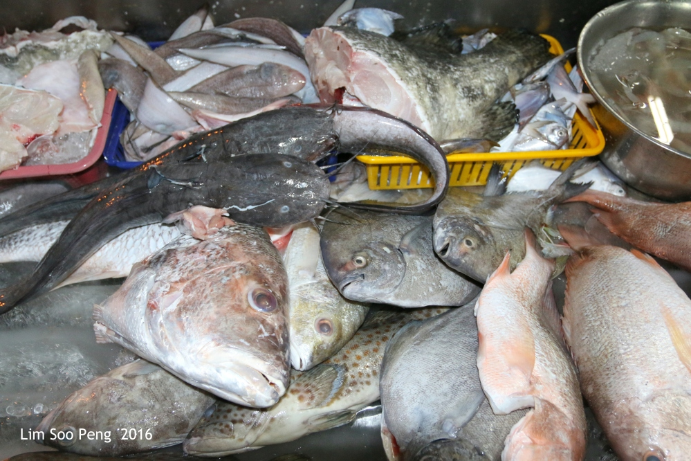 """Nearly everything seafood"" - the choice is up to you with the selection of fresh fishes from the sea. Expensive grouper, cheaper cat-fish, soles, Pomfret, sting-rays, and many other varieties are available here."