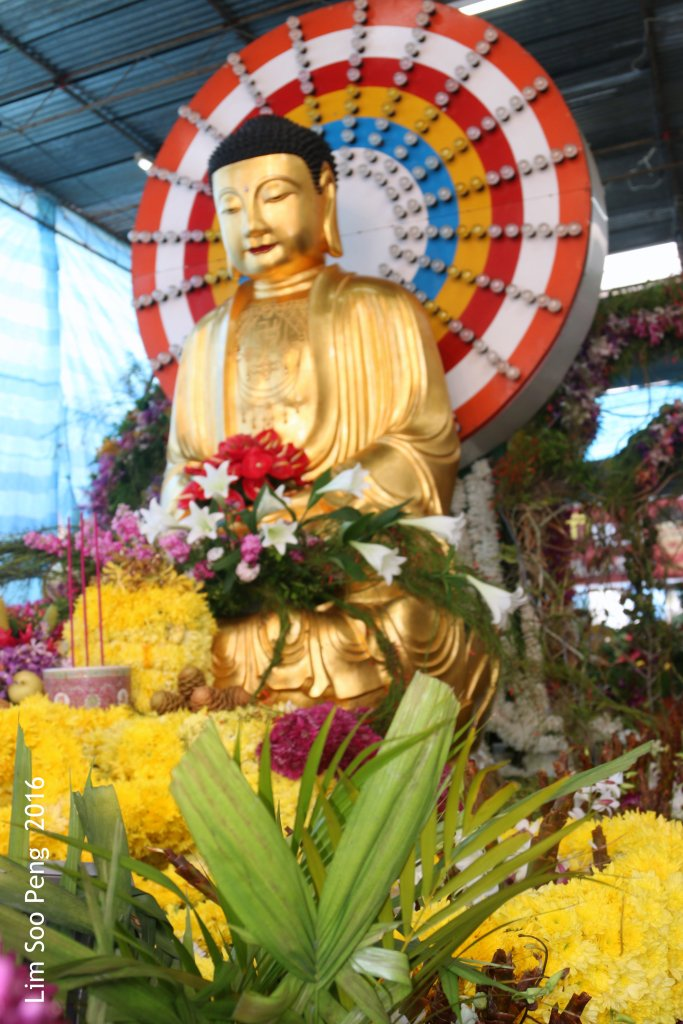 Wesak Day Morning 017