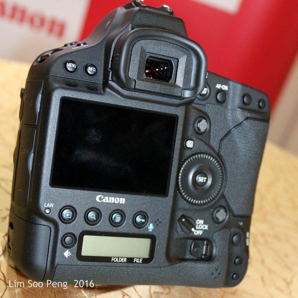 Canon EOS 1DX MII 012