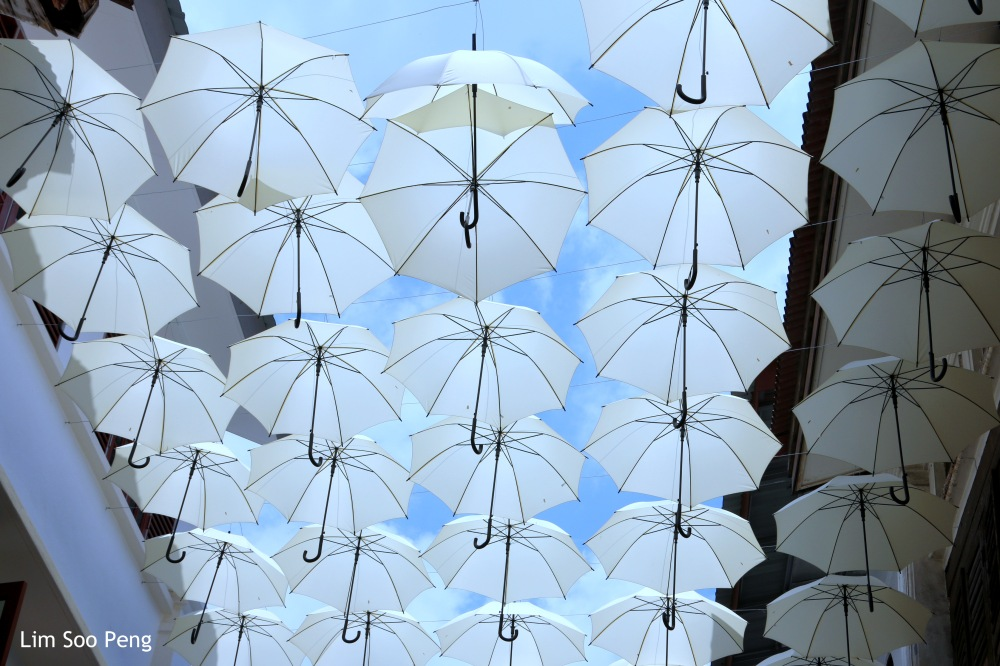 Somewhere in Ipoh, Perak, Malaysia with umbrellas and more umbrellas.