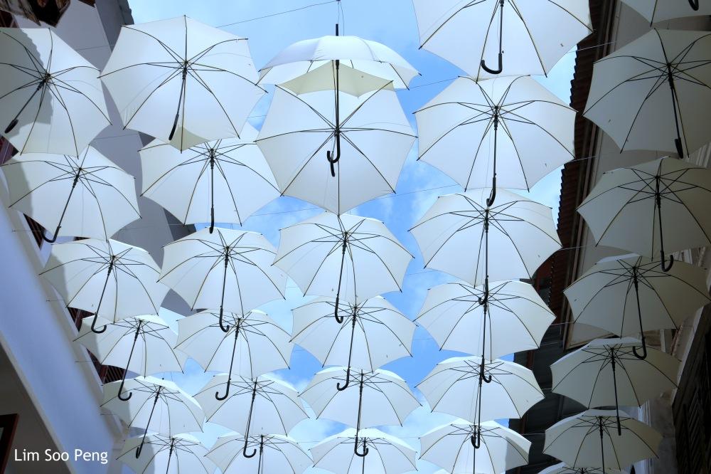 Somewhere in Ipoh, Perak, Malaysia with umbrellas and more umbrellas.