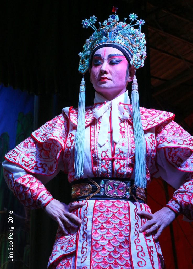 "My Wayang or Chinese Opera Photography started from last night. "" The Prince - son-in-law of the Emperor's daughter """