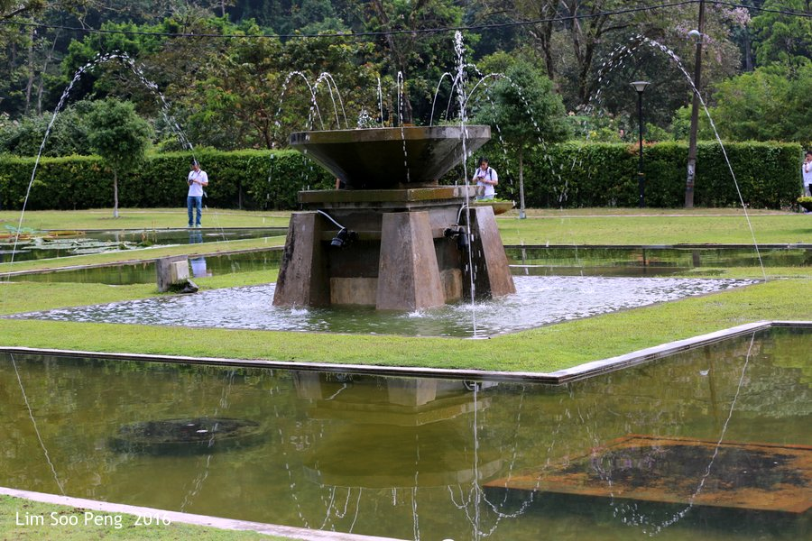 The Fountain at the Penang Botanic Garden