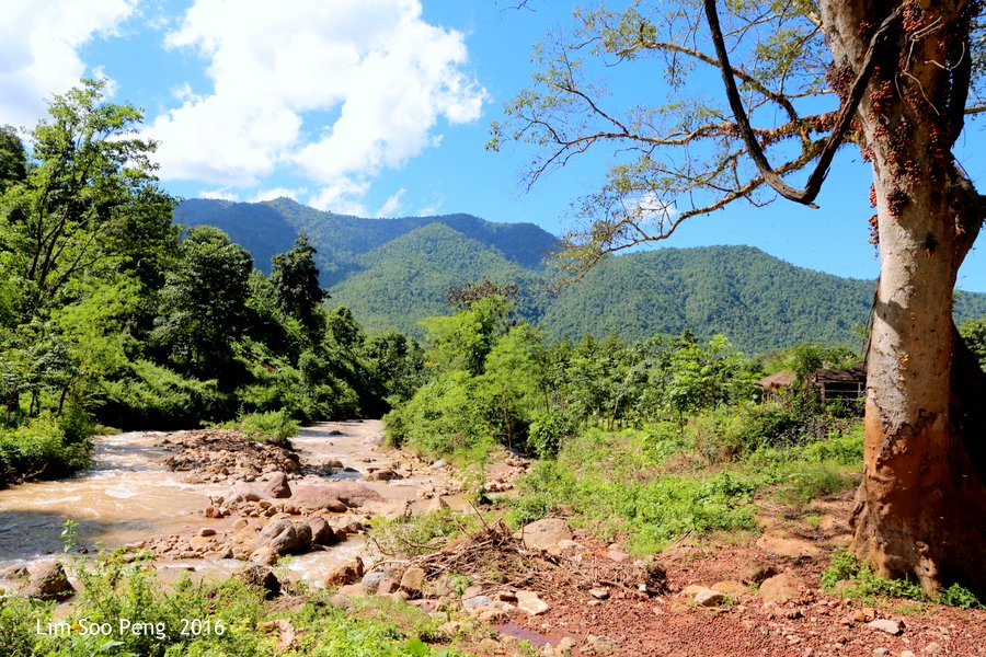 A Hot Day in the Shan Plateau, Myanmar near the Green Hill Valley Elephant Camp of Burma.