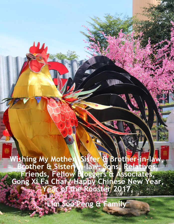 Chinese New Year Greetings 2017