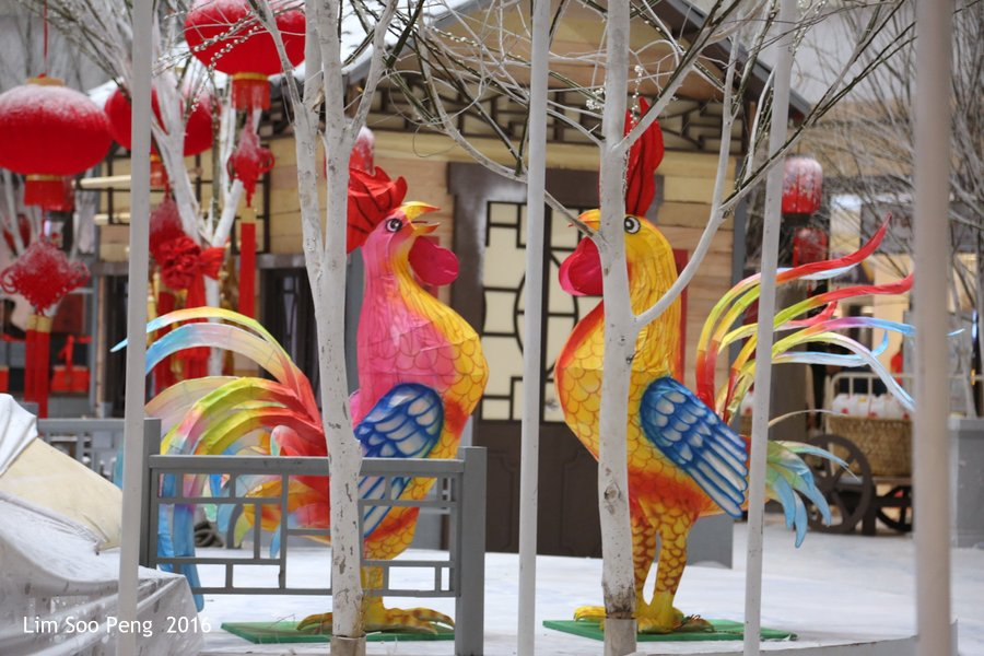 Getting ready for the Year of Rooster of Chinese New Year 2017