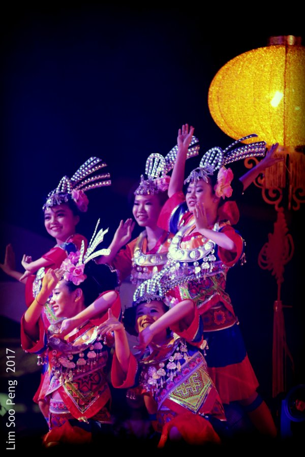 The Chinese Cultural Dancers